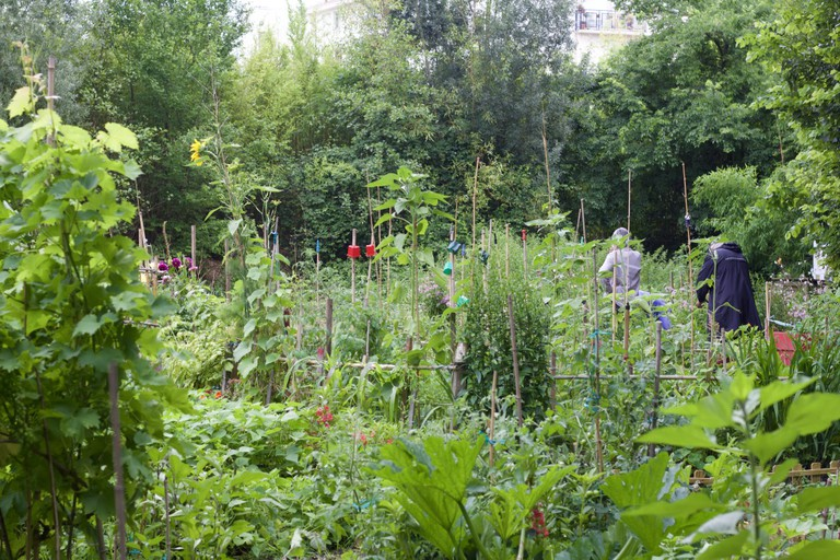 Collaborative garden at Parc Rivière/