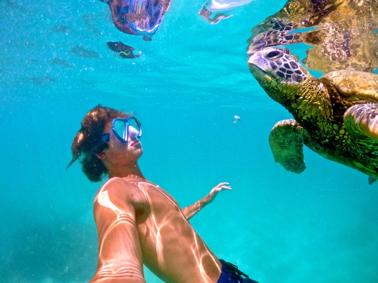 Swimming with a honu (sea turtle), Haleiwa Oahu
