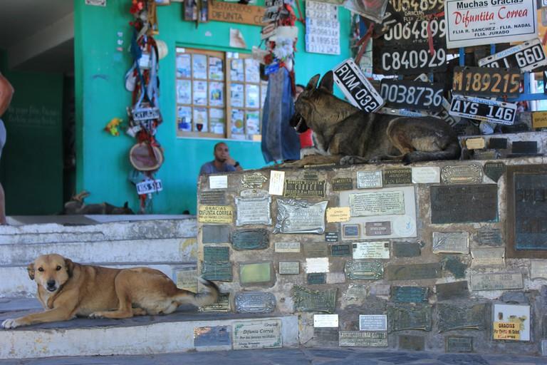 A local relaxes on the steps of La Difunta Correa shrine
