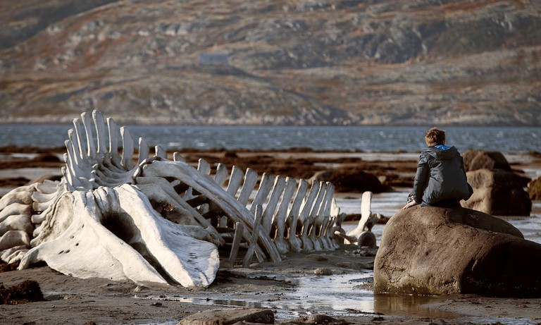 'Leviathan'   © Sony Pictures Classics