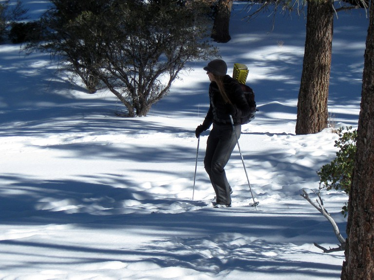 Cross-country skiing is a great alternative to skiing in winter