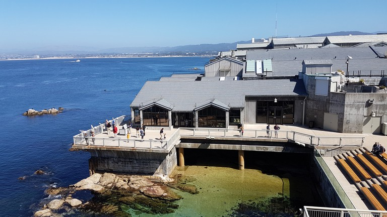 Monterey Bay Aquarium was the basis of the locations for Finding Dory