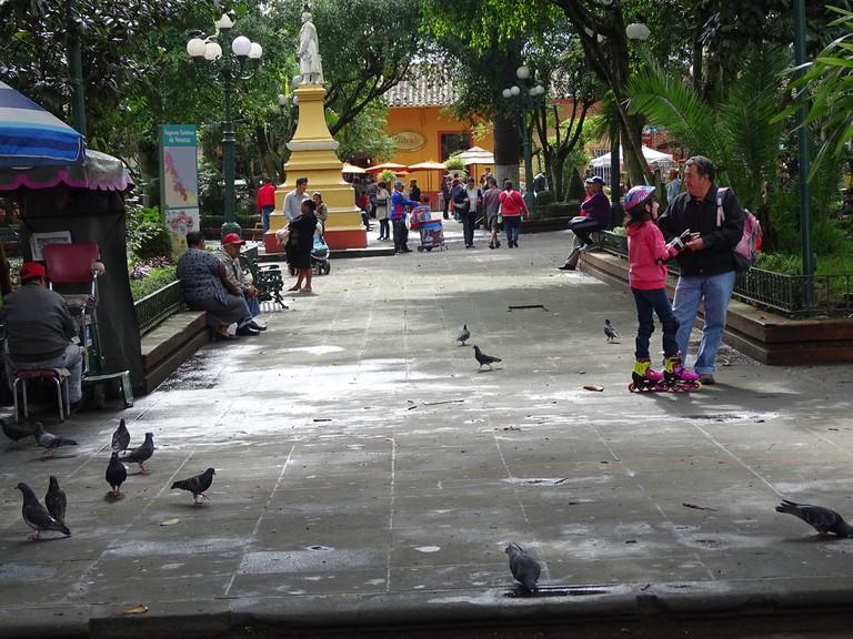Coatepec downtown