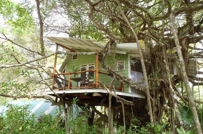A true treehouse experience