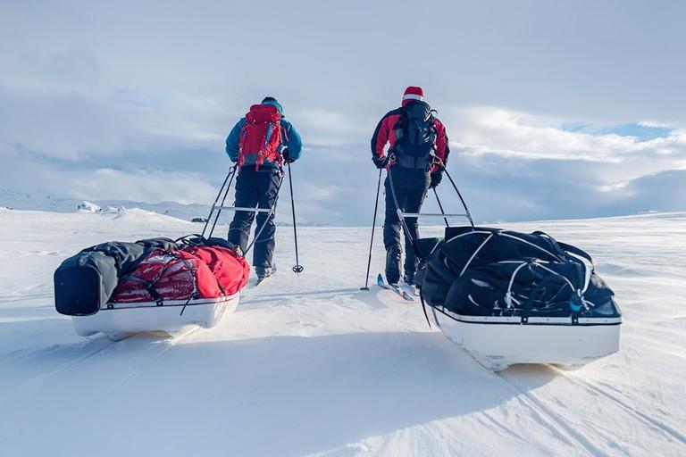 Winter adventurers using Pulkas   © Jens Ottoson/Shutterstock