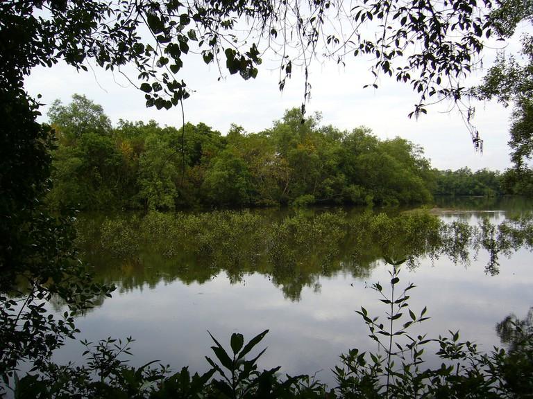 Sungei Buloh Wetland Reserve | © Benoit Mortgat / Flickr