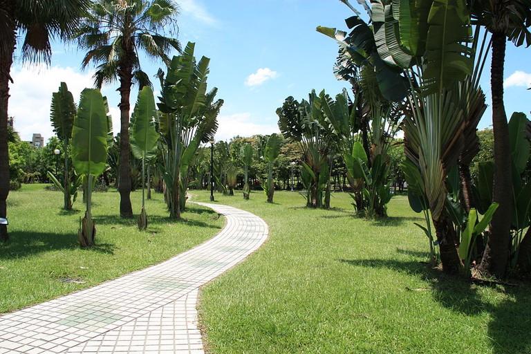 Daan Forest Park