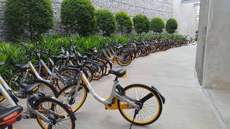 Rows of oBikes parked at the designated areas