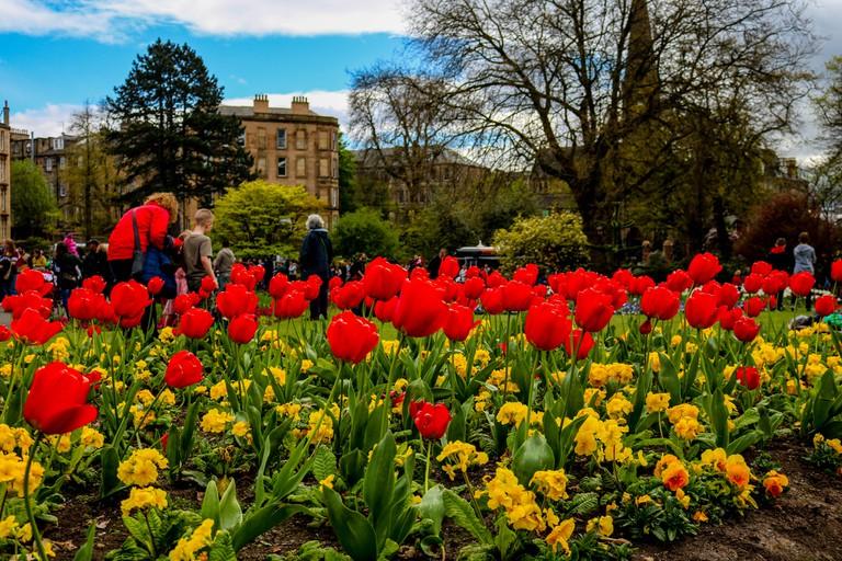 Glasgow Botanic Gardens In April   © aqibmushtaq/Flickr