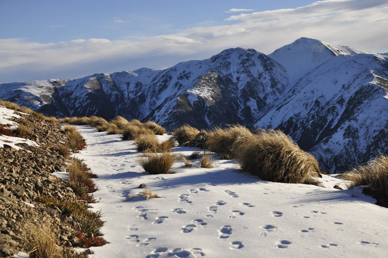 New Zealand in Winter