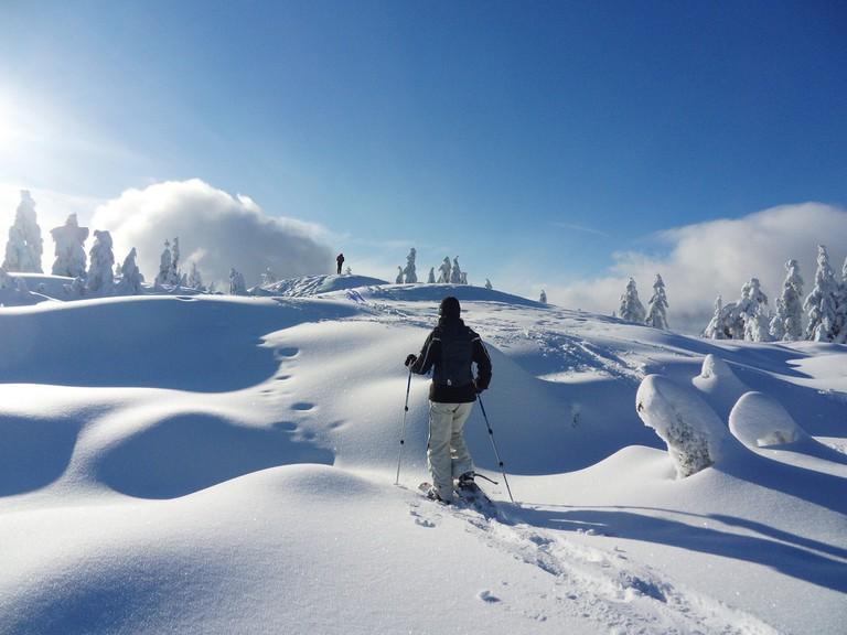 Snowshoe hikers