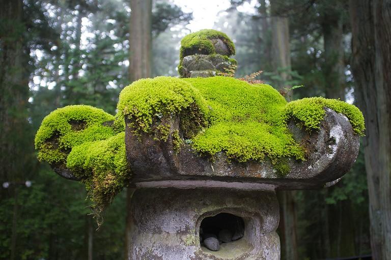 Moss-covered statue, Nikko
