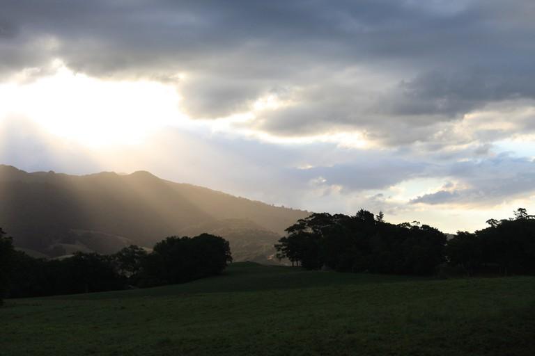 Pirongia, Waikato, New Zealand