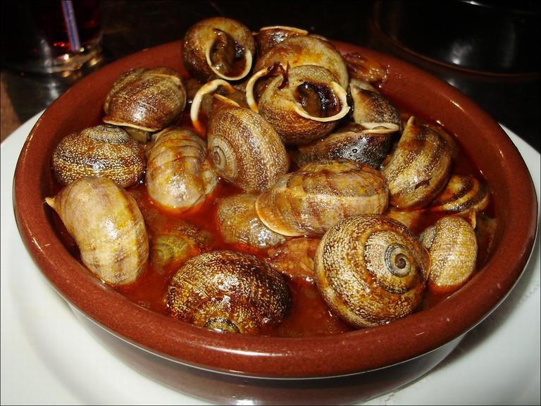 Andorran snails | ©Nacho Facello / Wikimedia Commons