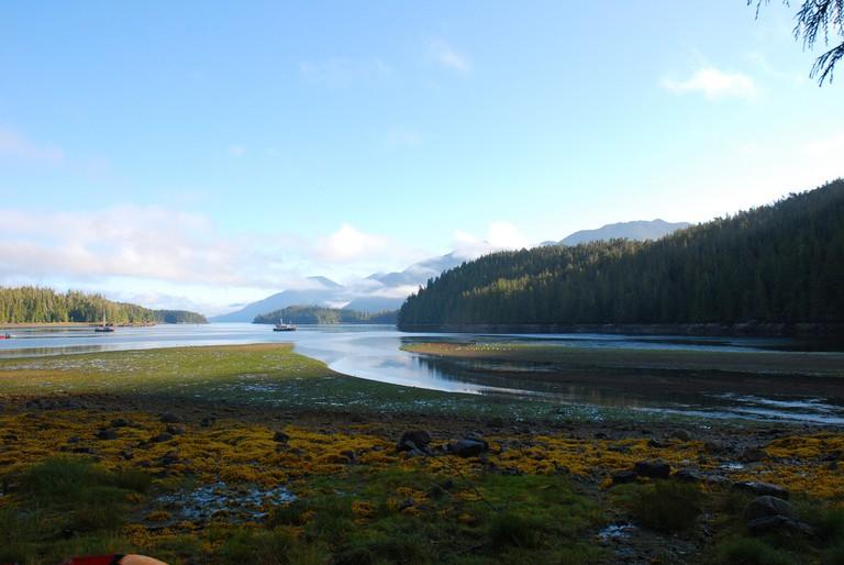 Barnard Harbour in the Great Bear Rainforest, BC   © Dogwood BC / Flickr