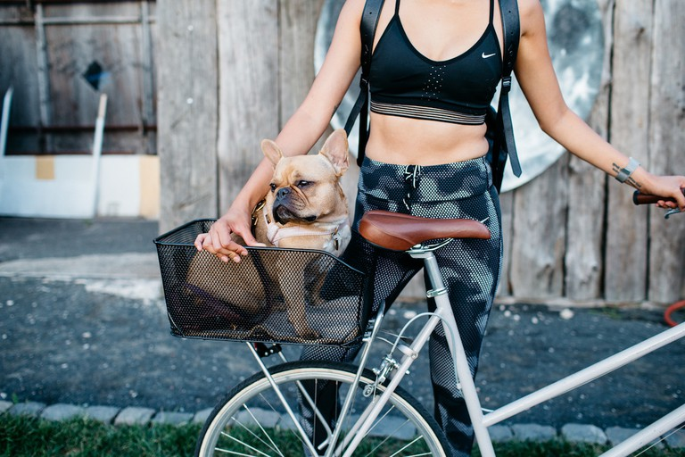 Transport to doga | Courtesy of Masha Maltsava