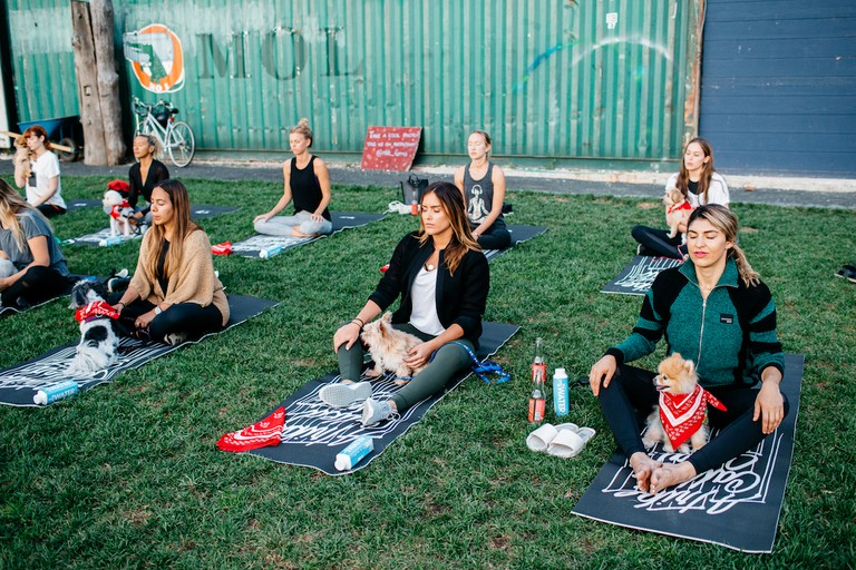 Starting Doga in seated meditation