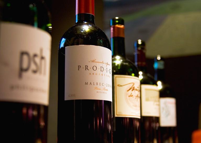Wine tasting at The Vines of Mendoza