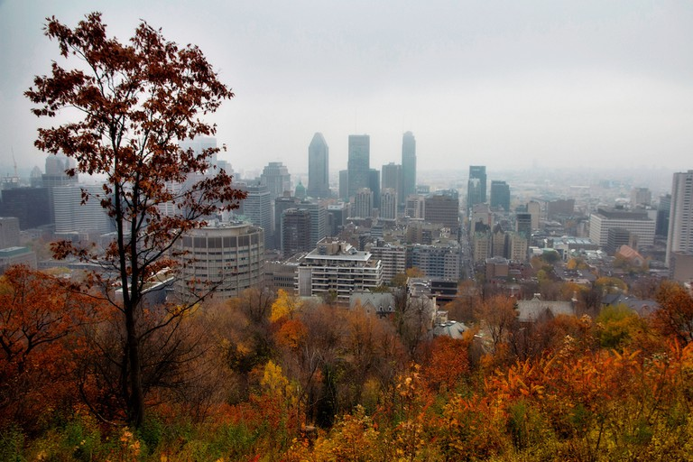 Autumn colors in Montreal