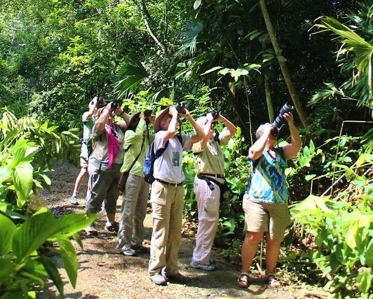 Visitors at Gamboa Rainforest Resort