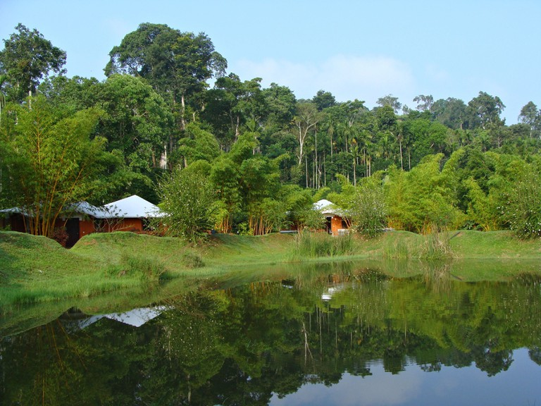 Although, the town is mostly known for its coffee, Coorg has much more to offer