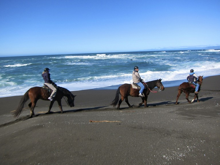 Shoreline horseback riding | © Jennifer Morrow / Flickr