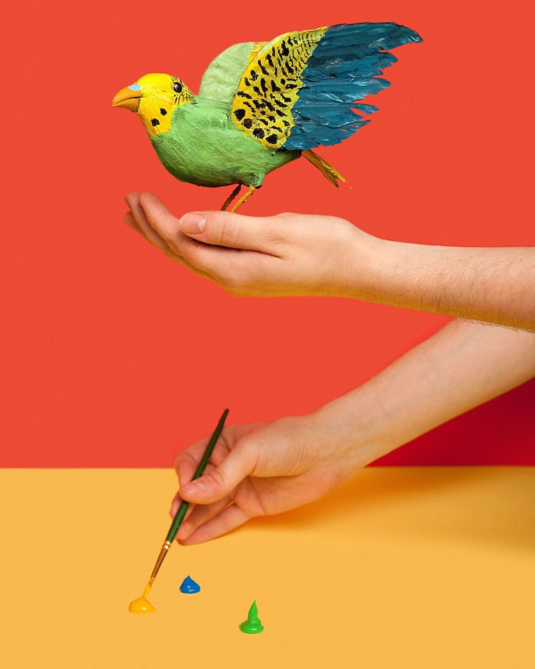 """In Michigan it is illegal to paint sparrows with the intention of selling them as parakeets."" From I Fought the Law: Photographs by Olivia Locher of the Strangest Laws from Each of the 50 States, published by Chronicle Books 2017 