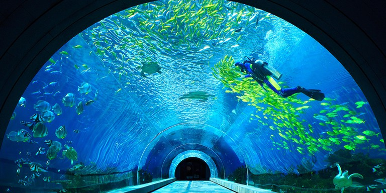 The standout highlight of Intercontinental Sanya is its large sea water aquarium and its restaurant, AQUA. Photo: Courtesy of Intercontinental Group.