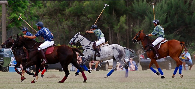 Polo, The Sport of Kings