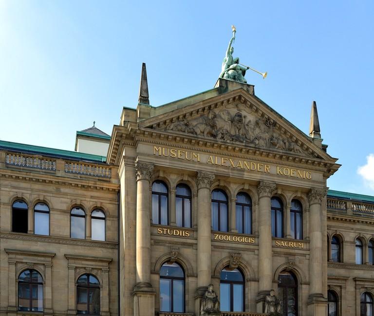 Bonn Museum