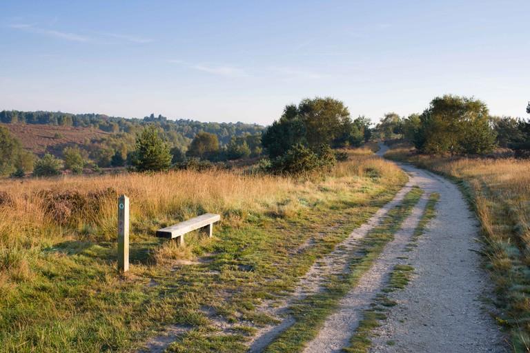 Chobham Common National Nature Reserve, Surrey, England UK, filming location of Superman II.