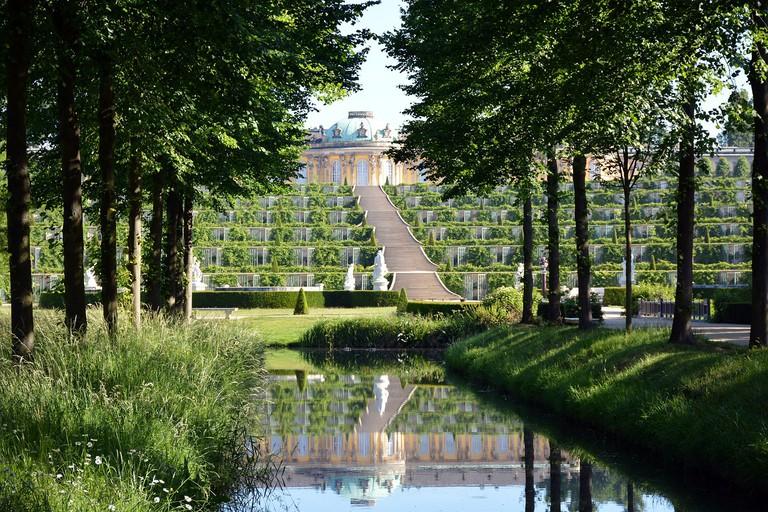 The vineyard terraces