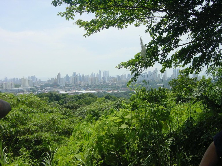 View from the lookout at Parque Natural Metropolitano
