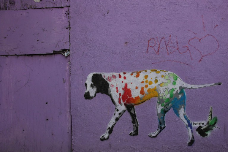A common site in Mexico City and around the world is artist Jenaro's famous colored dalmatian