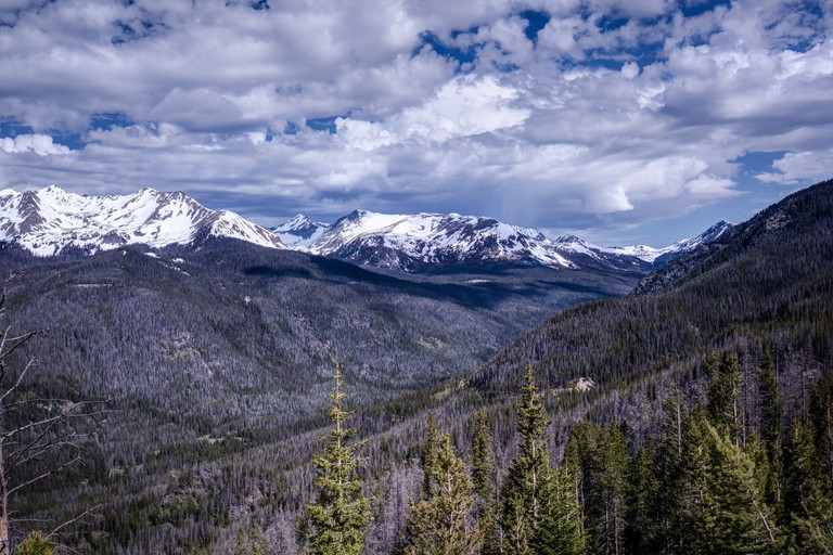 View from Trail Ridge Road in Rocky Mountain National Park