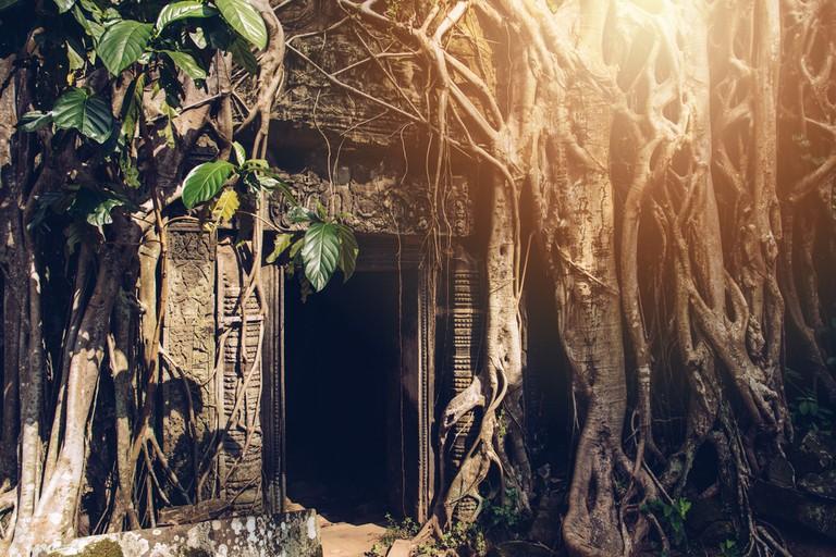The mystery entrance door in Ta Prohm temple in Siem Reap
