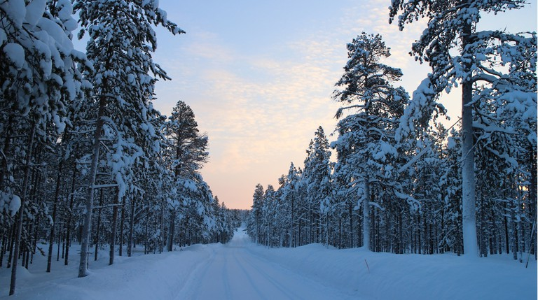 Finland winter landscape
