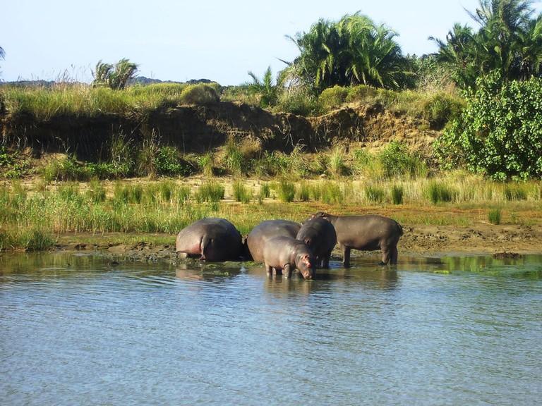 UNESCO_iSimangaliso-Wetland-Park