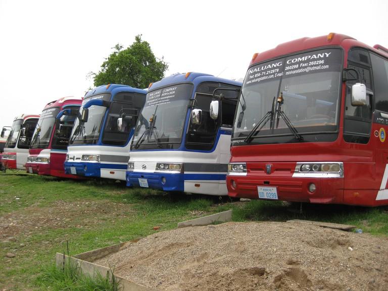 International buses