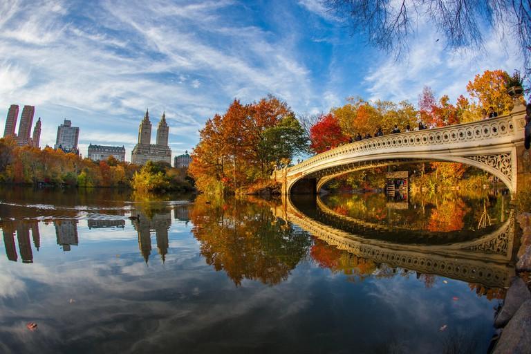 Central Park bow bridge |© Anthony Quintano