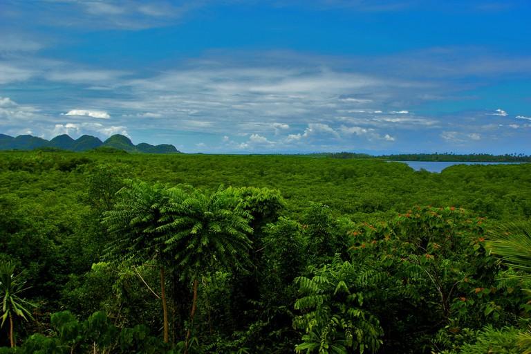Lush, hilltop view in Siargao