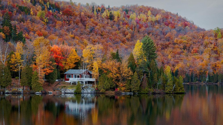 Fall in the Laurentian Mountains