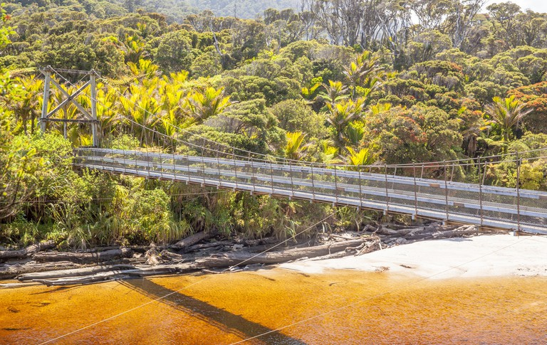 Suspension Bridge, Kahurangi National Park