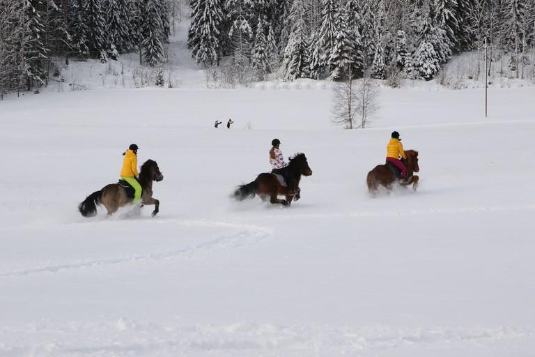Horseback riding through the snow / Visit Lakeland / Flickr