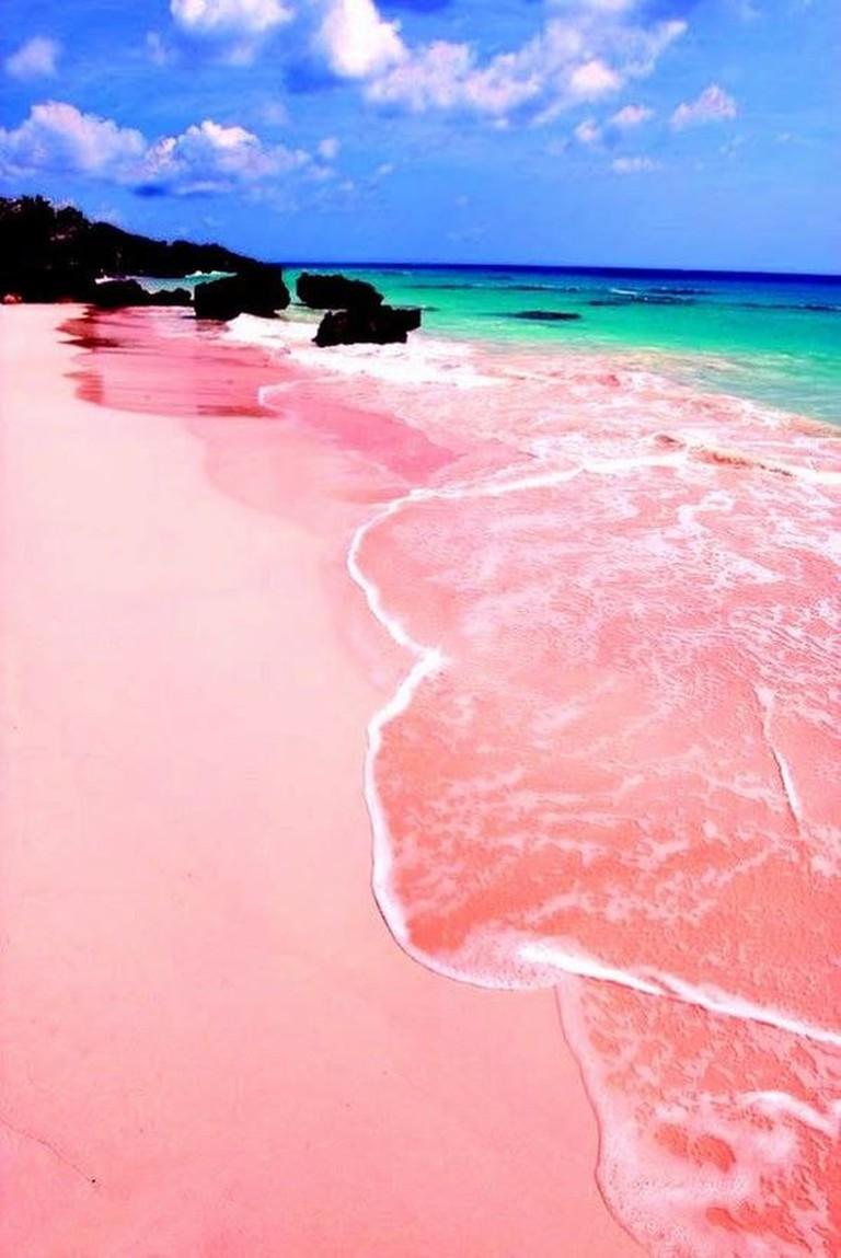 Pink Beach, Lombok   © celebrityabc/Flickr