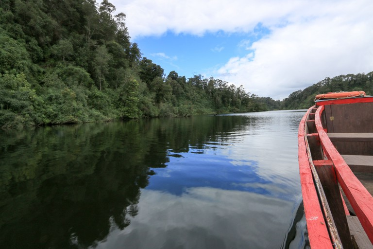 Llanquihue National Reserve