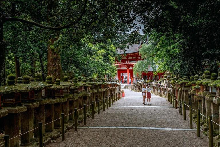 Stone Lanterns lead to The Kasuga Shrine