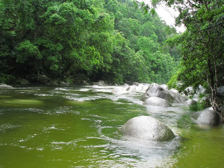 The Wet Tropics
