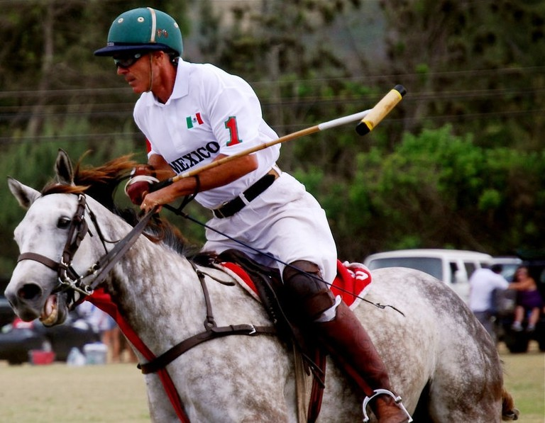 The Polo World Cup