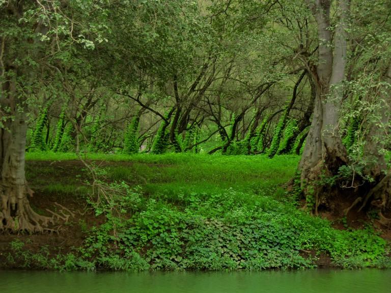 Wadi Darbat, Salalah